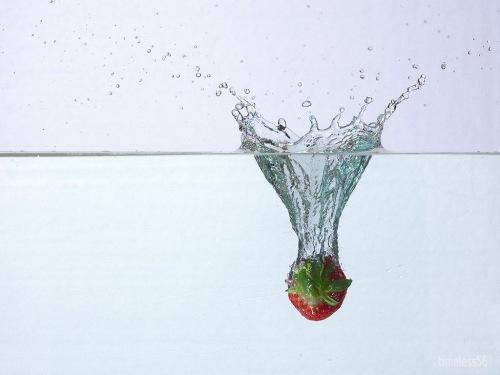 Splash-1